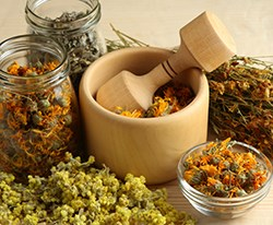 Herbs for Hair