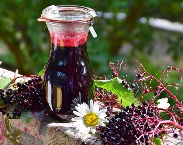 """The berries and flowers of elderberry are packed with antioxidants and vitamins that mayboost your immune system and prevent certain types of illnesses. They could help tame inflammation, lessen stress, and help protect your heart and blood circulation too. Some experts recommend elderberry to help prevent and ease cold and flu symptoms. There is little to no research exists on elderberry gummies themselves that's why we are introducing the 15 simple (but important) things to remember about elderberry gummies for men. However, supplements cannot and should not replace a healthy, balanced diet. However, it is not recommended by any health expert and no scientific research or data supports any evidence on using it instead of prescribing med. But you can enjoy it anyway and it doesn't have any harmful effects. Here are the five benefits of elderberry gummies for kids that may change your perspectives. Nature's Way Sambucus Black Elderberry Gummies For Men with Vitamin C and Zinc, 60 Gummies About Special Ingredients: Gluten-Free, Wheat free Dosage Form: Gummy Brand: Nature's Way Unit Count: 60 Count Ingredients: Black Elder (Sambucus nigra L.) Extract (berry) standardized to Bioactive. Features Triple action immune blends with vitamin C, zinc, and black elderberry extract. Sambucus elderberry gummies are made from black elderberry extract. Elderberries have traditionally been used as a winter remedy for immune support. Full-spectrum black elderberry extract is standardized to anthocyanins, which are potent flavonoid Bioactive. Our elderberry extract has been tested for bioavailability and activity within the body. No artificial colors, flavors, or preservatives. Gluten-free. [i2pc show_title=""""false"""" title=""""Pros & Cons"""" show_button=""""false"""" pros_title=""""Pros"""" cons_title=""""Cons"""" ][i2pros]Vitamin A, B, & C Potassium And Antioxidants Fighting Free Radicals[/i2pros][i2cons]Vomiting, Diarrhea, Or Other Stomach Upsets Raw and unripe berries contain cyanide. Allergic reactions[/i"""
